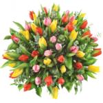 Kwiaty-Bogusław